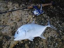 沖縄から遊漁船「アユナ丸」-釣果(21.11.01)