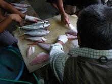 沖縄から遊漁船「アユナ丸」-釣果(21.11.03)