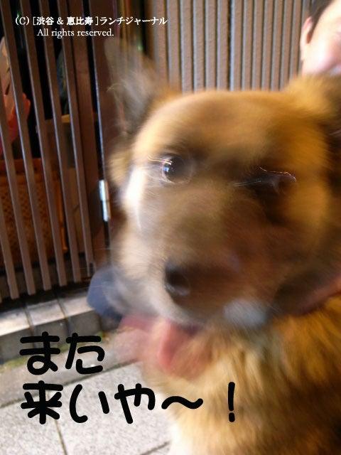 ●[渋谷&恵比寿] ランチ・ジャーナル-12