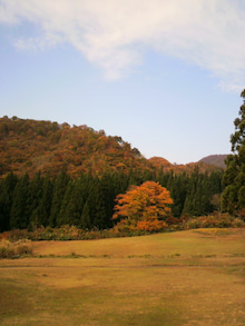 kintaちゃんのブログ-2009110108180001.jpg
