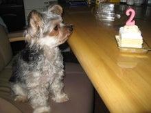 コタ・こた・虎太郎-虎太郎 2歳お誕生日