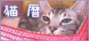 猫 暦 マンチカン+バツイチコモチ+オカメインコ-猫暦サイトバナー1