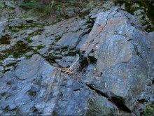haibaraのブログ-石・岩