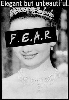 F.E.A.R blog