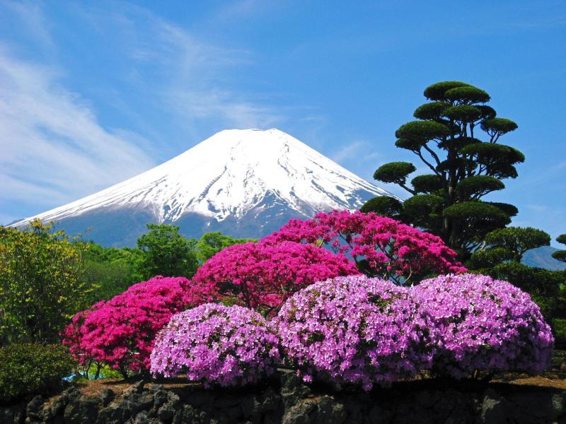 ●さつきと富士山の画像|クソみてえなウンコのアメブロゆるキャラ富士山ニャ~♪