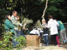 緑化推進事業の活動報告-1107ワラ掛け02