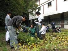 緑化推進事業の活動報告-1107作業中01
