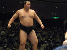 現役女子大生、暁のどすこい!大相撲観戦日記