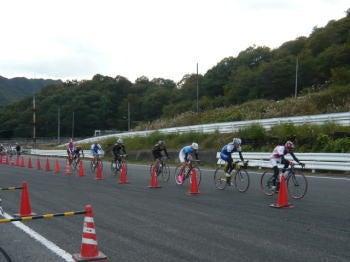 ヨッシーの自転車畑-11.5