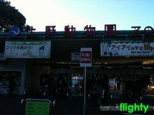 flighty life-zoo2