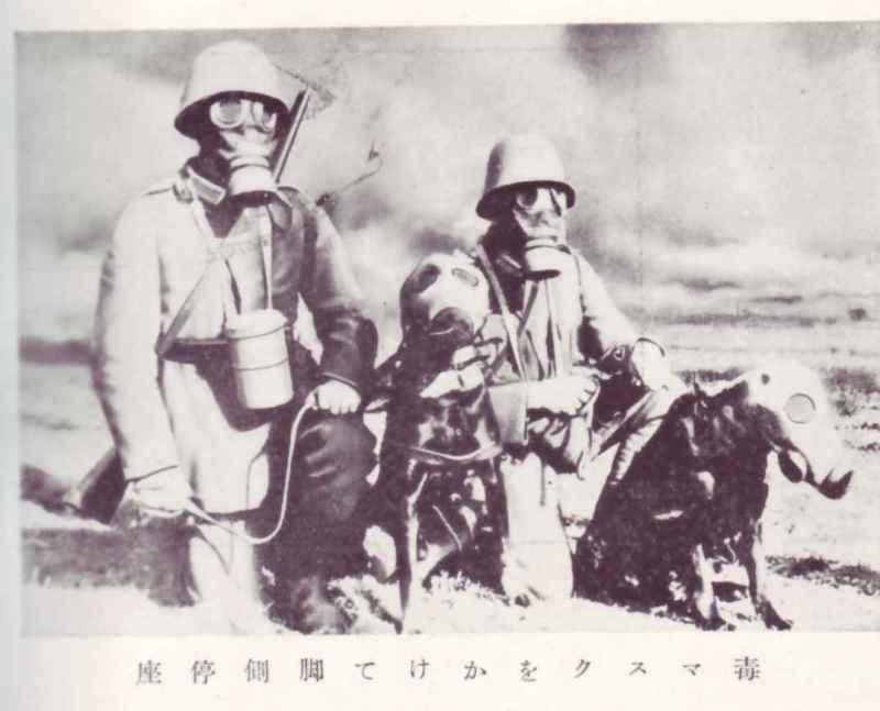 帝國ノ犬達-ドイツ軍用犬