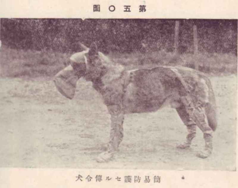 帝國ノ犬達-95式防毒覆面