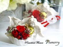 Plumerry(プルメリー)プリザーブドフラワースクール (千葉・浦安校)-エンジェルリーフ クリスマス