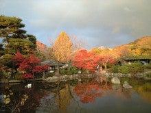 素直な女になるために……-円山公園1