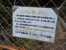 スーパーB級コレクション伝説-091122takao40