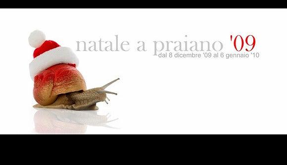 【彼女の恋した南イタリア】 ~ diario-Natale a Praiano