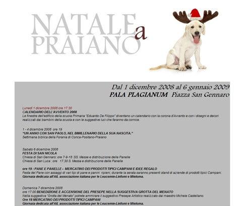 【彼女の恋した南イタリア】 ~ diario-Natale a Praiano 2008