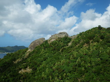 小笠原父島エコツアー情報    エコツーリズムの島        小笠原の旅情報と父島の自然-吹割山