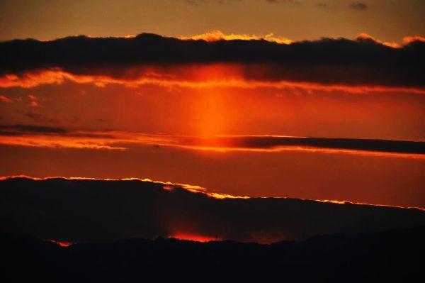 北海道の野生動植物写真-日没