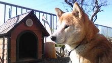 $taketakenakaさんのブログ-Image296.jpg