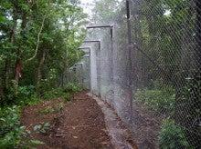 小笠原父島エコツアー情報    エコツーリズムの島        小笠原の旅情報と父島の自然-柵