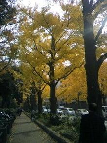 ~Junkoro Songbird♪~-091127_110117.JPG