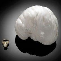 世界第二位の巨大真珠…