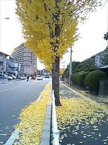 博多ホメホメ新聞-091128_1603~0002.jpg