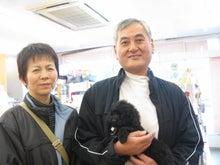 ペットショップ プチマリア 金沢店日記-浜口ブラックプー