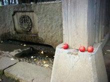 """あいうえお相性学でお馴染み『甲子堂・若隠居""""きねさん""""』の縁側de世相チェック-境内の風景2"""