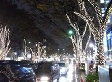 miyatake-宮武--表参道のイルミネーション