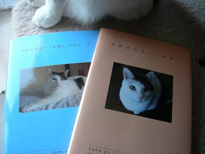 ゲゲゲ猫日記