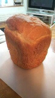 北の空から~ソフトクリームとパンとこどものブログ~-2009121512490000.jpg