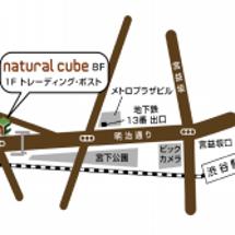 ◆斜頸。。。東京都渋…
