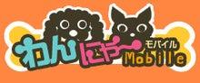 ☆★I love ORIX Buffaloes★☆