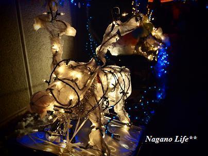 Nagano Life**-トナカイ