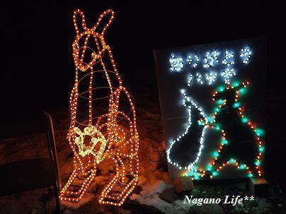 Nagano Life**-ハッチ