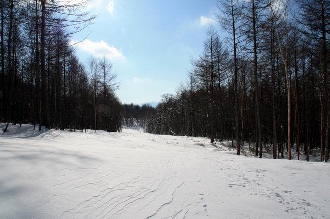 スノーシューハイク-ロマンス林間コース