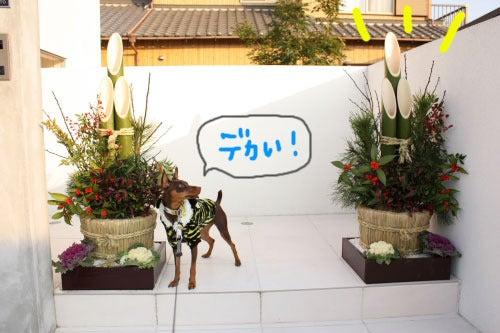 イオス☆Smart Life