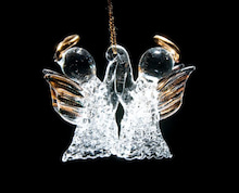 Grumpy Monkey(不機嫌なおさるさん)の観察日記-angel glass