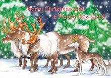 $NAJRAN SALUKIS DIARY 2-Christmas card