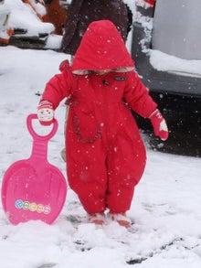日々 更に駆け引き-初雪遊び