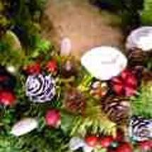 野瀬先生のクリスマス…
