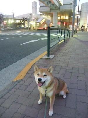 創立314年?!東京ヴェルディ1696-たまのと泉体育館3