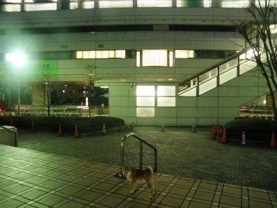 創立314年?!東京ヴェルディ1696-たまのと泉体育館5