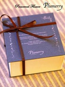 Plumerry(プルメリー)プリザーブドフラワースクール (千葉・浦安校)-ケーキボックス