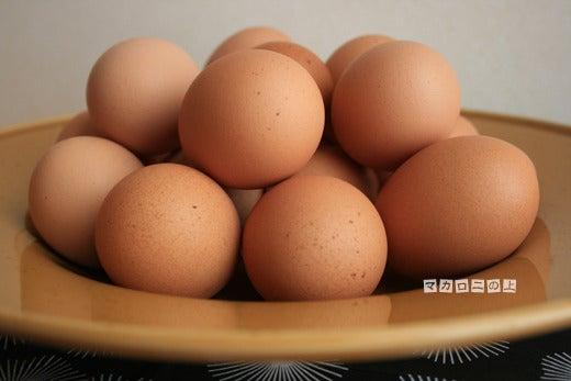 こはくのブログ/マカロニの上のパルミジャーノ-伊勢原卵2