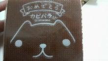 $へなちょこ日記-カステラ2