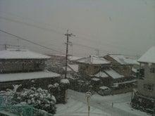鹿児島 有限会社オフィスインズ社長のブログ-雪2