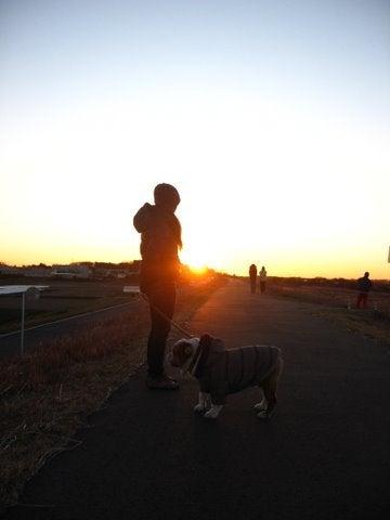 犬がブーと鳴いた日